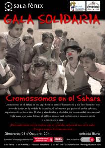 Cromossomos en el Sahara